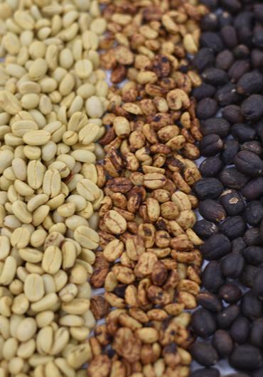 dinastia12-cafe-tostado-grano-mexico